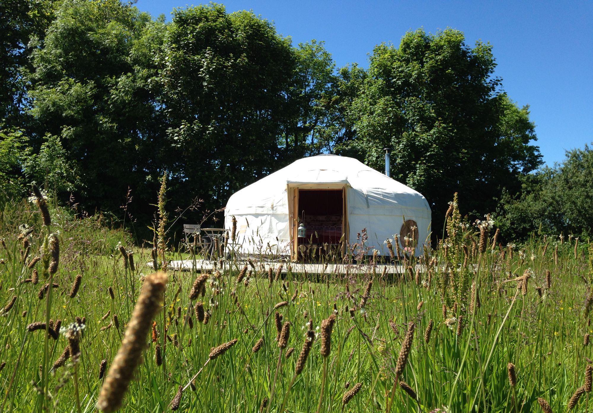 Treemer Farm Yurts