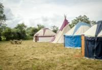 Pilton Yurt Camps- Gordon's Field East