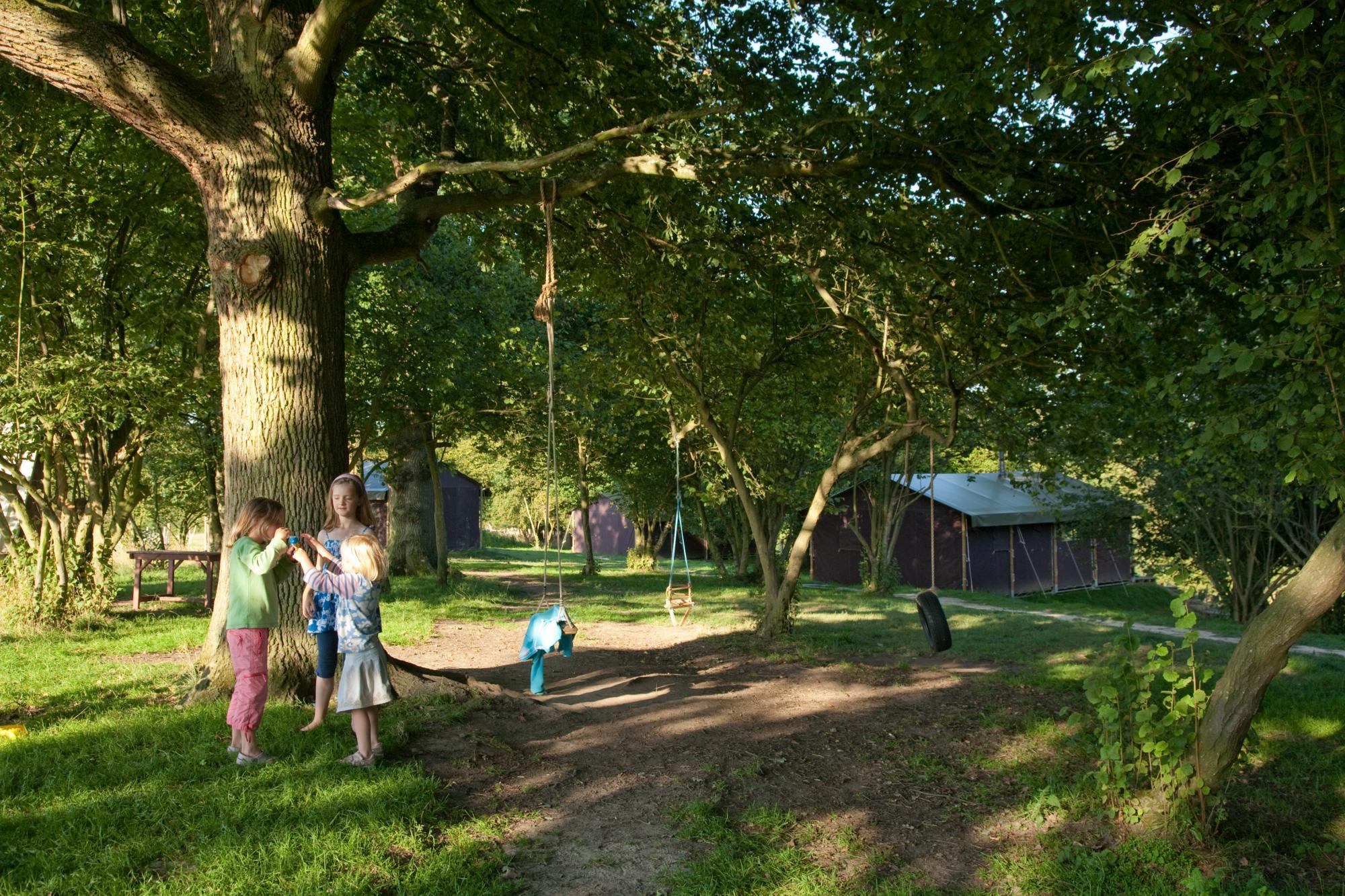 Feather Down Farm campsites