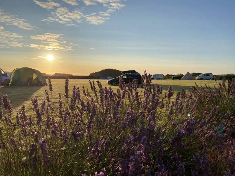 Rainbolts Hill Farm Rainbolts Hill Farm, Roch, Haverfordwest Pembrokeshire, SA62 6AF