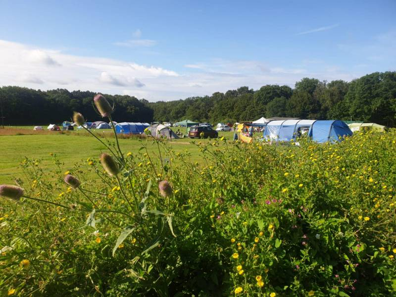 Cinderford Camping