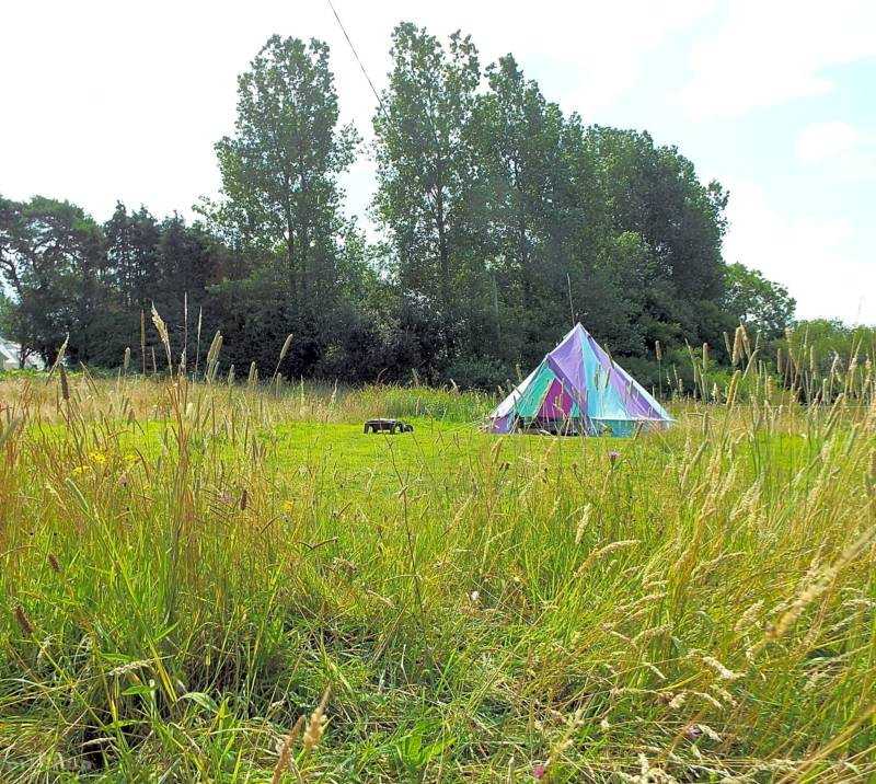 Cresselly Bell Tent