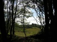 Greenvale Barn