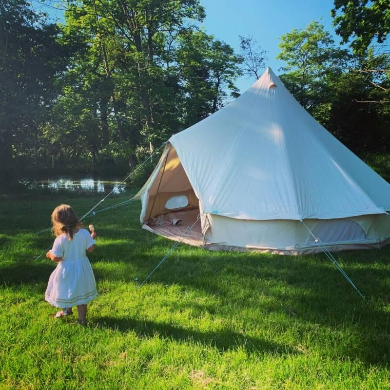 Martlet Tent set in a beautiful Alder Carr