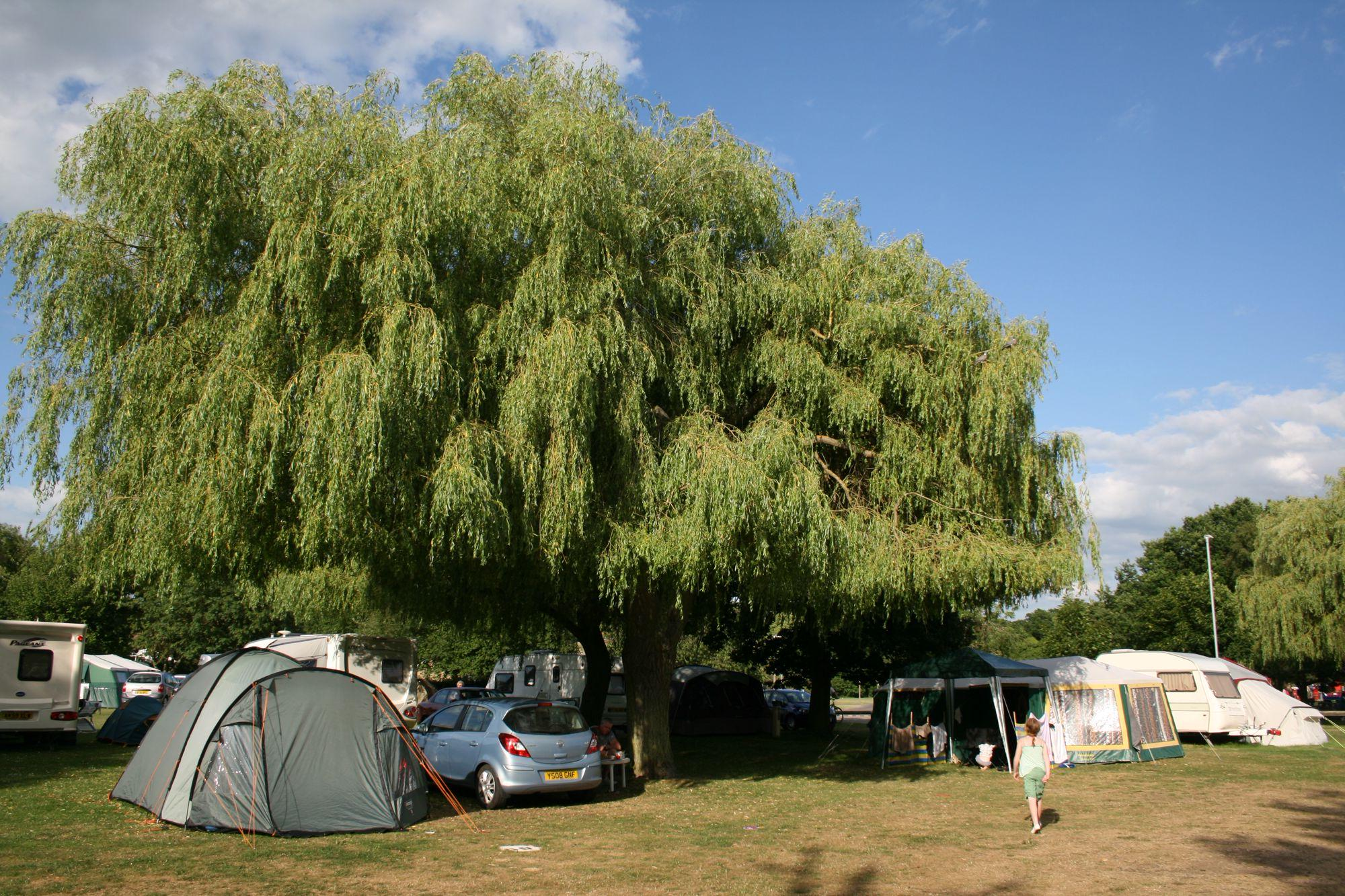 Jubilee Park, Lincolnshire