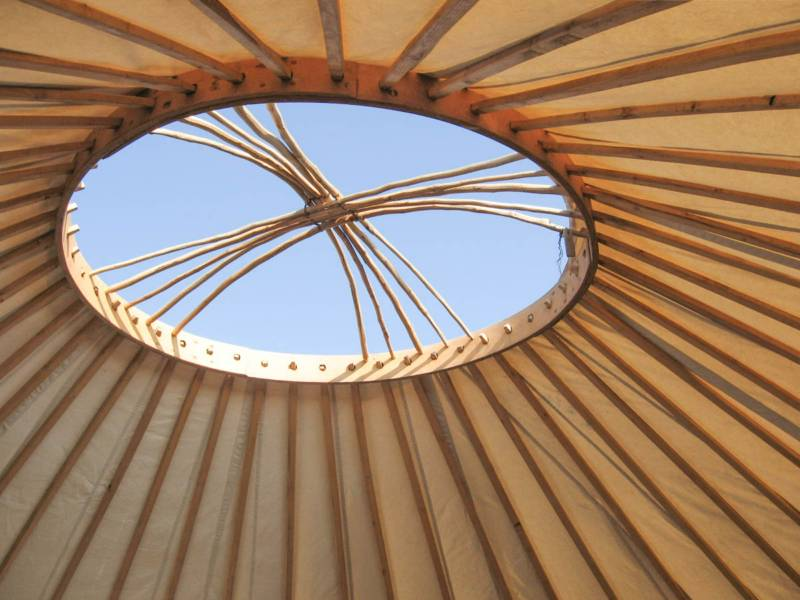 Mugwort Yurt