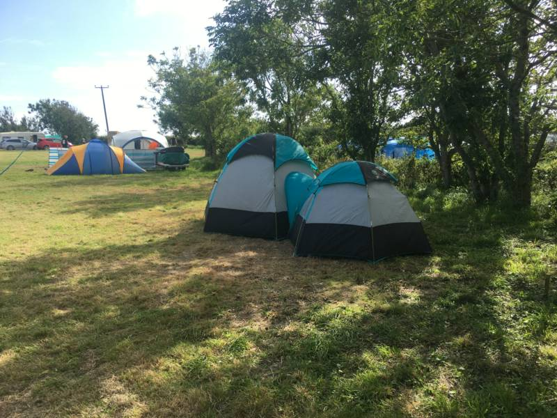 Main Field - Tent Pitch 14