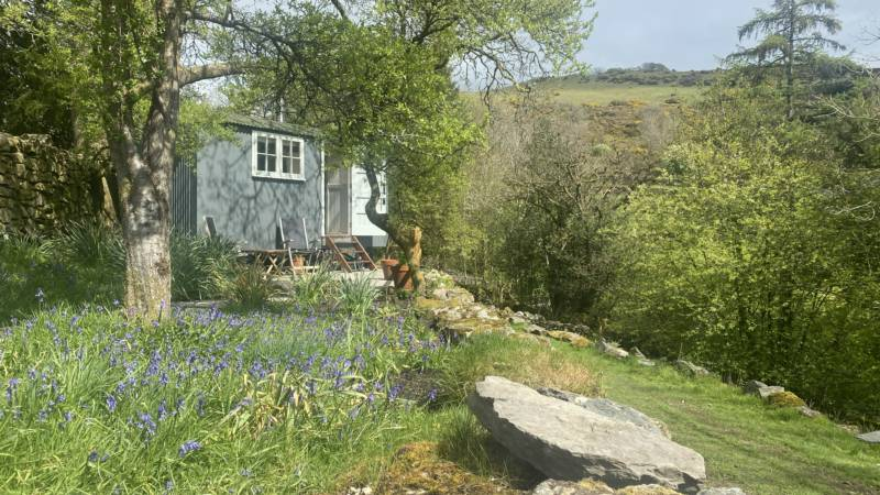 The Damson Shepherd's Hut