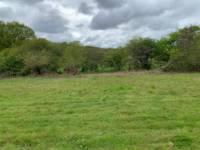 Nick's Field pitch 4