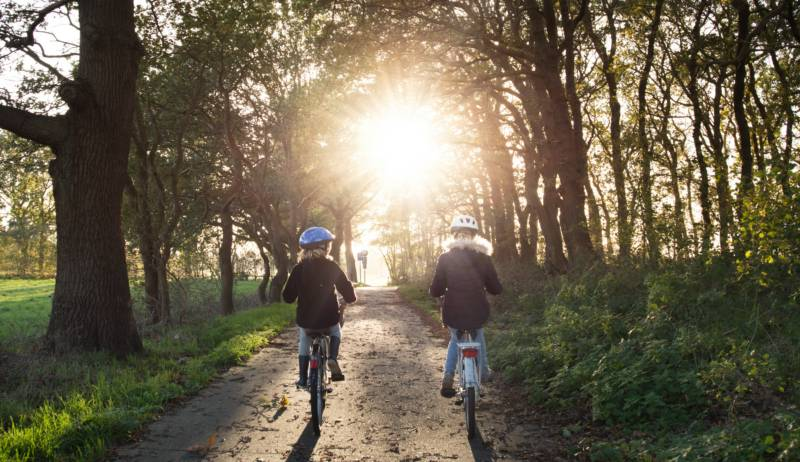 There are bikes of all shapes and sizes for hire in the New Forest, suiting all age groups.