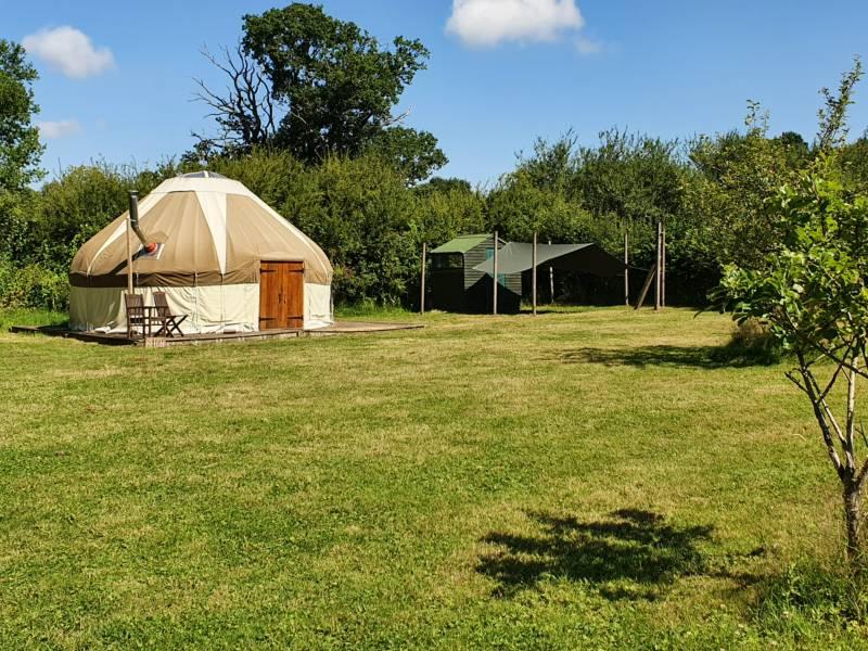 Beech Yurt
