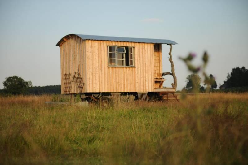 Cedar Wagon