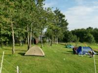 Family Pitch for larger tents / Campervan