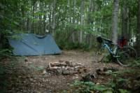 Small Woodland Pitch
