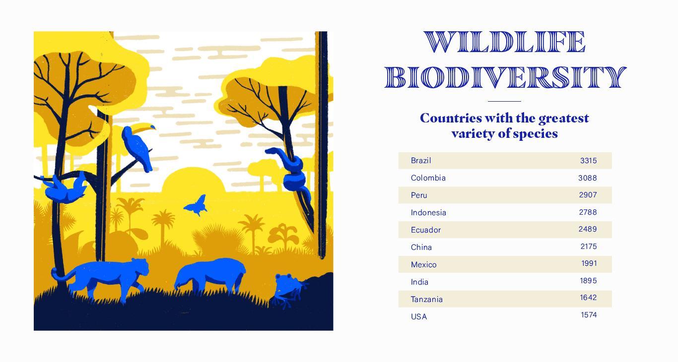 Wildlife Biodiversity