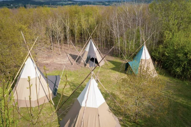 Fire Circle Camp