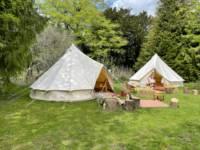 Sheba's Tent