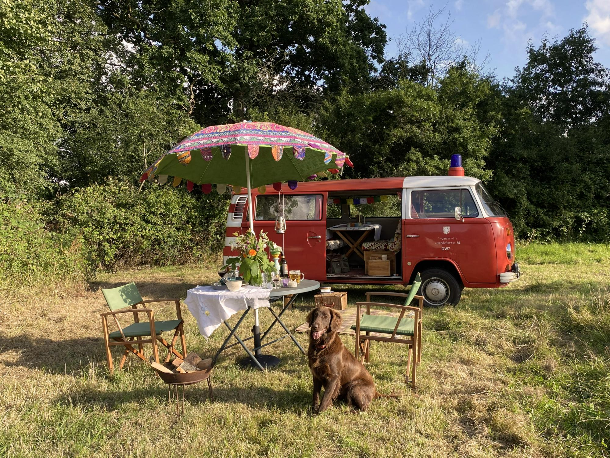 Campsites in South West England – Glampingly