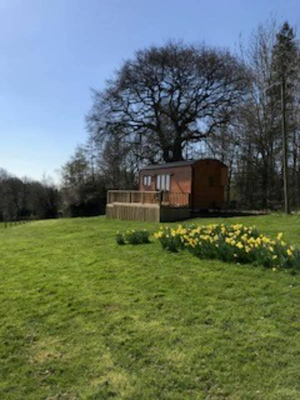Hopton Shepherds Hut