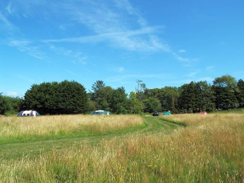 Covert Farm Camping Covert Farm Camping, Jeffreyston, Pembrokeshire SA68 0RH