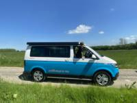 Buddy - VW California T6.1 Ocean 4Motion