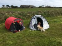 Long Field - Tent Pitch 21