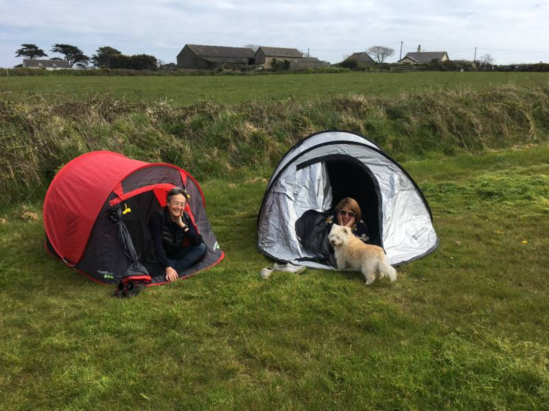 Long Field - Tent Pitch