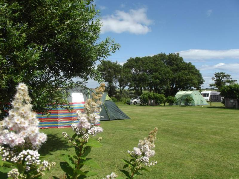 Parkland Camping and Glamping Site