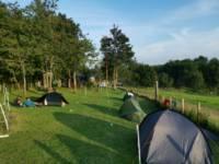 Standard Pitch (max 4-man tent)