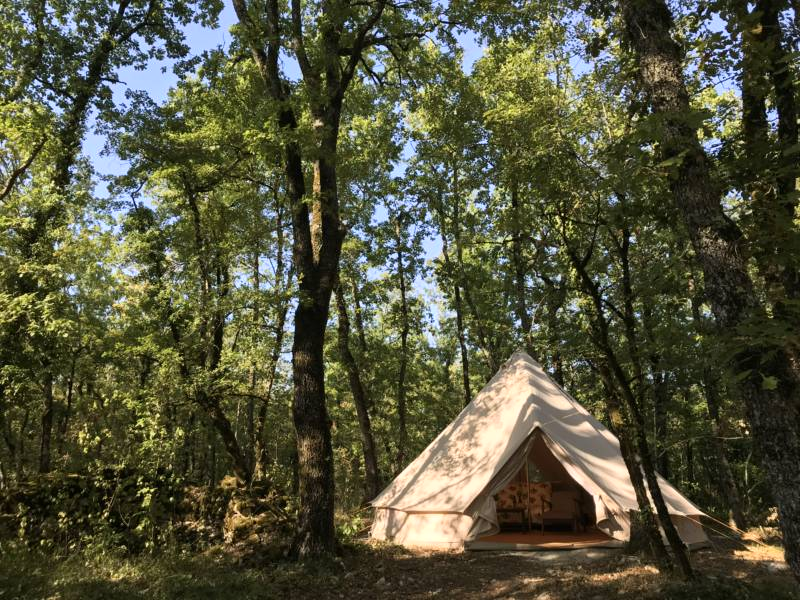 Wild Oak Wood Saurugots, 82160, Loze  Tarn et Garonne, FRANCE