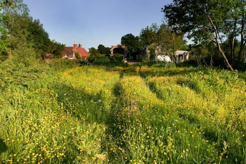 Brandiers Farm Crossing Ln, Brandier, Malmesbury, Wiltshire SN16 9PZ