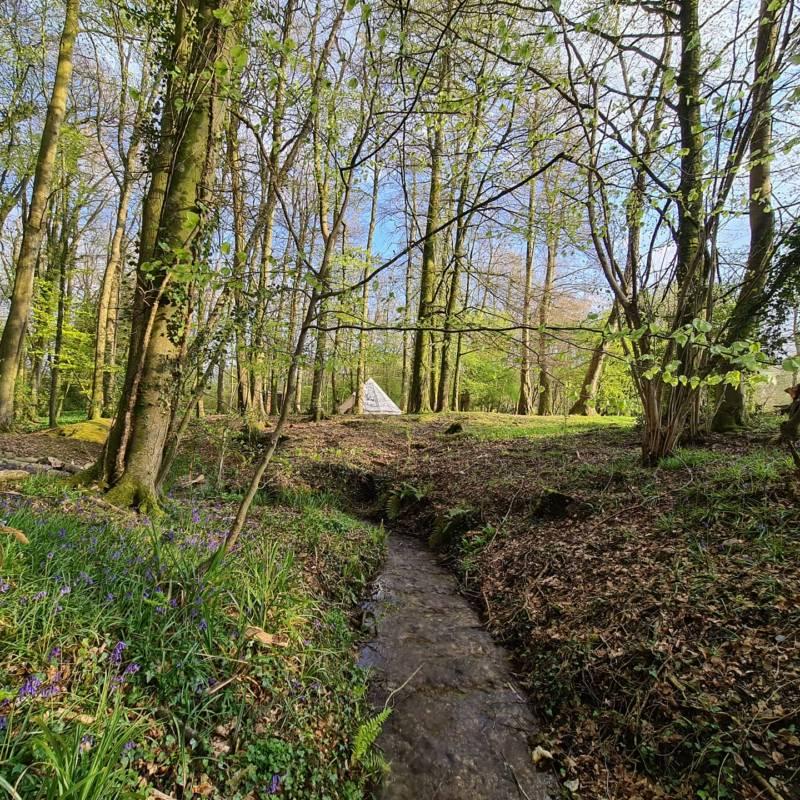 Wytch Wood Camping Blackmore Farm, Woolminstone, Crewkerne, Somerset TA18 8QP